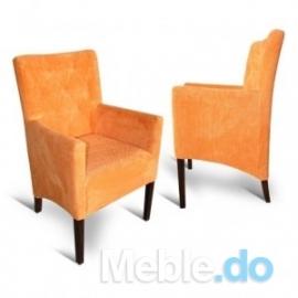Wyjatkowy Design Fotel...
