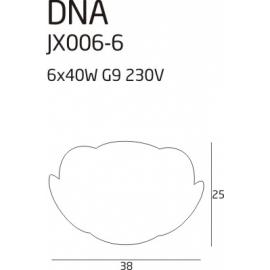 DNA plafon